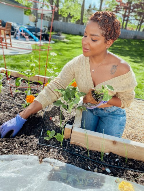 gardening and dealing with my allergies